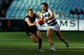 AFL 2014 Rd 17 - Melbourne v Geelong