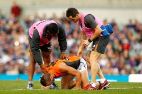 AFL 2014 Rd 17 - Fremantle v GWS Giants
