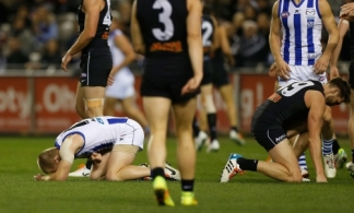 AFL 2014 Rd 18 - Carlton v North Melbourne