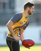 AFL 2014 Training - Richmond 050814