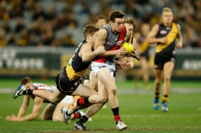 AFL 2014 Rd 20 - Richmond v Essendon