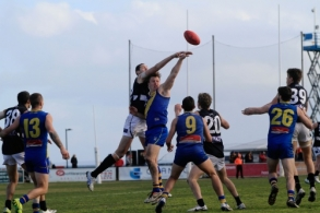 VFL 2014 Rd 18 - Williamstown v Northern Blues