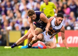 AFL 2014 Rd 21 - Fremantle v Hawthorn