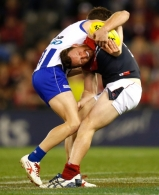 AFL 2014 Rd 23 - North Melbourne v Melbourne