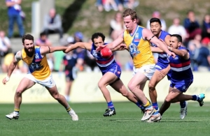 VFL 2014 2nd Qualifying Final - Footscray v Williamstown