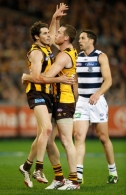 AFL 2014 Second Qualifying Final - Hawthorn v Geelong