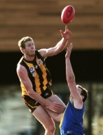 VFL 2014 Preliminary Final - Box Hill v Williamstown