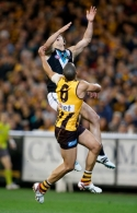 AFL 2014 Second Preliminary Final - Hawthorn v Port Adelaide