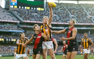 AFL 2015 Rd 02 - Essendon v Hawthorn