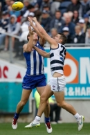AFL 2015 Rd 04 - Geelong v North Melbourne