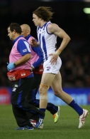 AFL 2015 Rd 07 - Essendon v North Melbourne