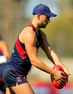 AFL 2015 Training - Melbourne 290515