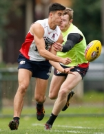 AFL 2015 Training - Melbourne 170615