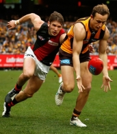 AFL 2015 Rd 13 - Hawthorn v Essendon