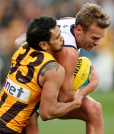 AFL 2015 Rd 15 - Hawthorn v Fremantle