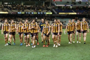 AFL 2015 Rd 18 - Hawthorn v Richmond