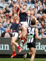 AFL 2015 Rd 18 - Collingwood v Melbourne
