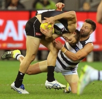 AFL 2015 Rd 22 - Geelong v Collingwood