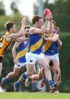 VFL Rd 20 - Box Hill v Williamstown