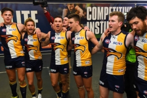 AFL 2015 Rd 23 - West Coast v St Kilda