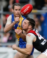 VFL 2015 Cup 1st Preliminary Final - Williamstown v Essendon