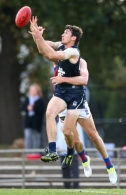 VFL 2016 Rd 03 - Northern Blues v Port Melbourne