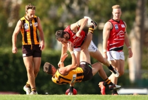 VFL 2016 Rd 04 - Box Hill Hawks v Frankston