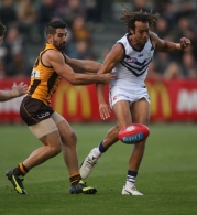 AFL 2016 Rd 08 - Hawthorn v Fremantle