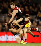 AFL 2016 Rd 12 - Essendon v Hawthorn