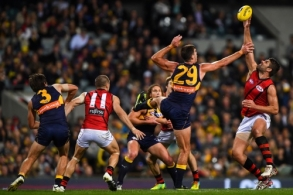AFL 2016 Rd 15 - West Coast v Essendon