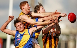 VFL 2016 Rd 14 - Box Hill Hawks v Williamstown