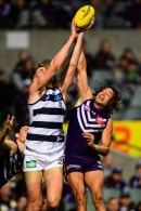 AFL 2016 Rd 17 - Fremantle v Geelong