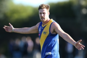 VFL 2016 Rd 17 - Sandringham v Williamstown
