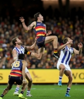 AFL 2016 First Elimination Final - Adelaide v North Melbourne