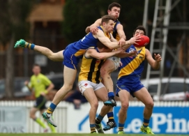 VFL 2016 1st Semi Final - Williamstown v Sandringham