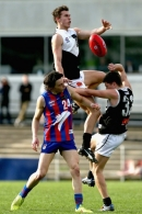 2016 TAC CUP 2nd Semi Final - North Ballarat Rebels v Oakleigh Chargers