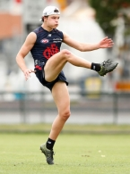 AFL 2017 Training - Melbourne 110117