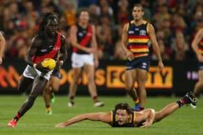 AFL 2017 Round 04 - Adelaide Crows v Essendon