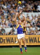 AFL 2017 Round 05 - Hawthorn v West Coast