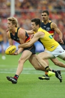 AFL 2017 Round 06 - Adelaide v Richmond