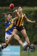 VFL 2017 Round 12 - Box Hill v Williamstown