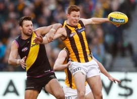 AFL 2017 Round 20 - Richmond v Hawthorn