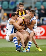 AFL 2017 Round 21 - Hawthorn v North Melbourne