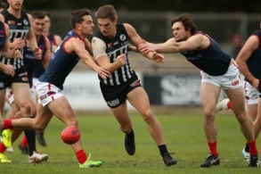 SANFL 2017 Round 17 - Port Adelaide v Norwood