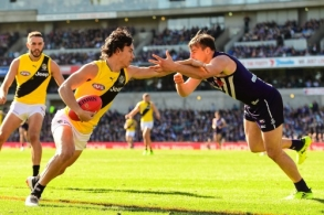 AFL 2017 Round 22 - Fremantle v Richmond
