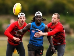 AFL 2017 Training - Essendon 060917