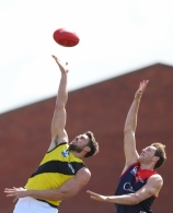 VFL 2017 Semi Final - Richmond v Casey Fields