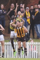 VFL 2017 Preliminary Final - Box Hill Hawks v Richmond