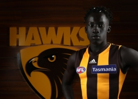 AFL 2018 Portaits - Hawthorn