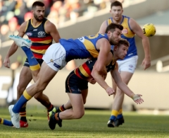 AFL 2018 Round 15 - Adelaide v West Coast